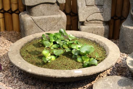 Schale Modell Lotus, bossierte Außenfläche, 50 cm Ø