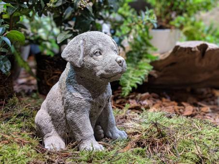 Kleiner Rottweiler, Gartenfigur, Tierfigur, 16 cm hoch