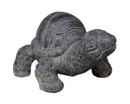 Schildkröte, ca. 33 cm