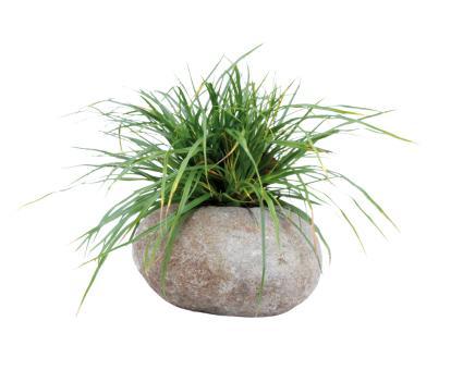Pflanzgefäß, ausgehöhlter Stein, Größe M