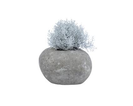 Pflanzgefäß, ausgehöhlter Stein, Größe S